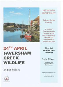 Wildlife talk poster